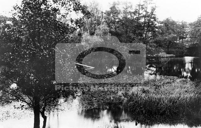 Felley Mill Pond, Underwood