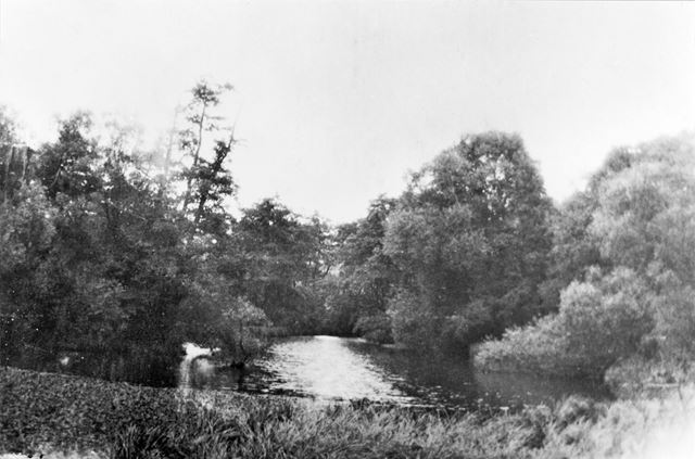 Felley Mill Pond, Underwood