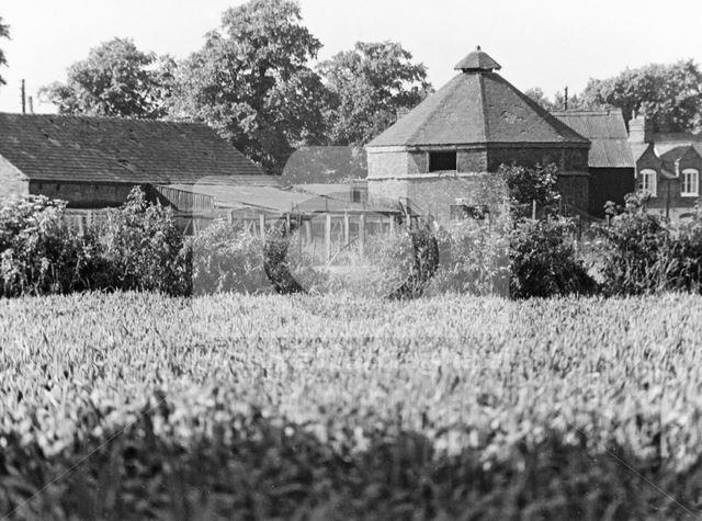 Dovecote, Manor Farm, Barton in Fabis