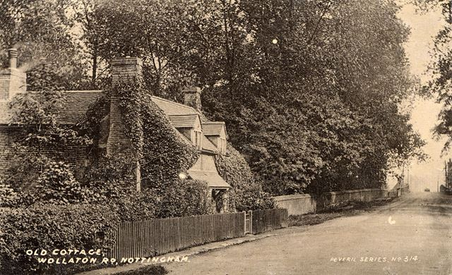 Vine cottage, Wollaton Road, Wollaton, c1905?
