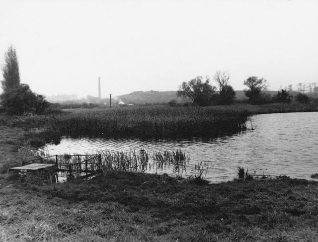 Martin's pond, Russell Avenue, Wollaton, 1966