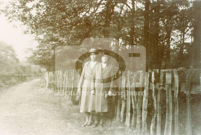 Blenheim Lane, Bulwell, 1935