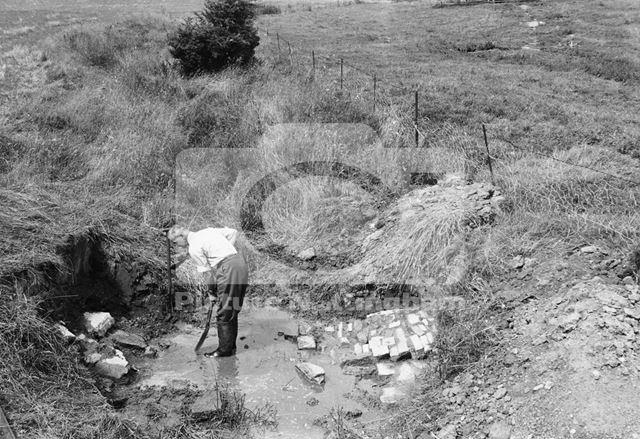 Wood Meadows, Excavations, 1953