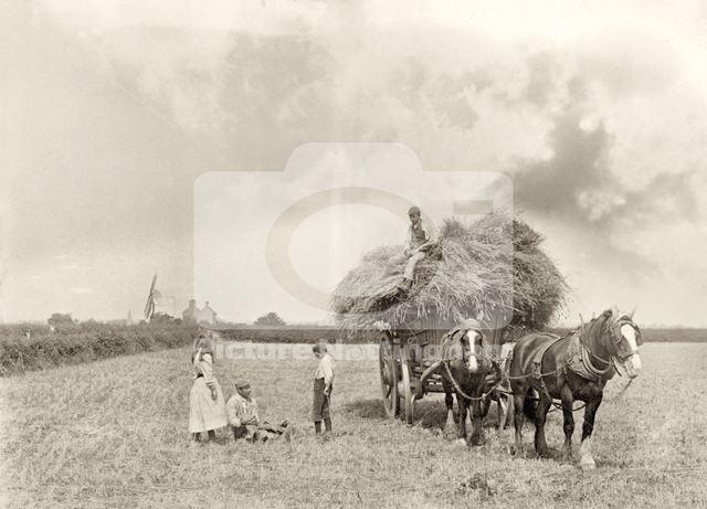 Haymaking in Ruddington