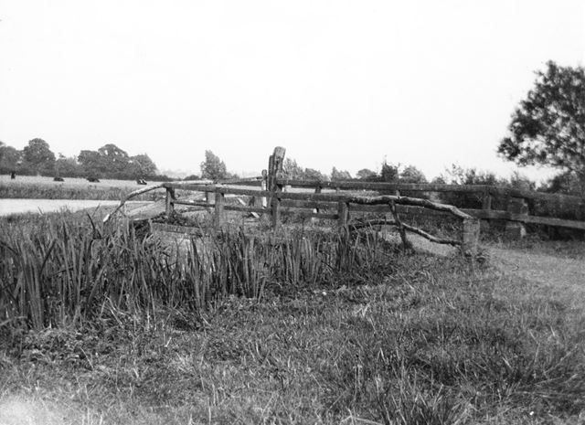Canal Bank, Normanton-on-Soar, c 1950 ?