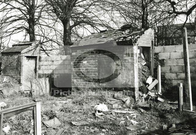 Backyard, Basford, 1980